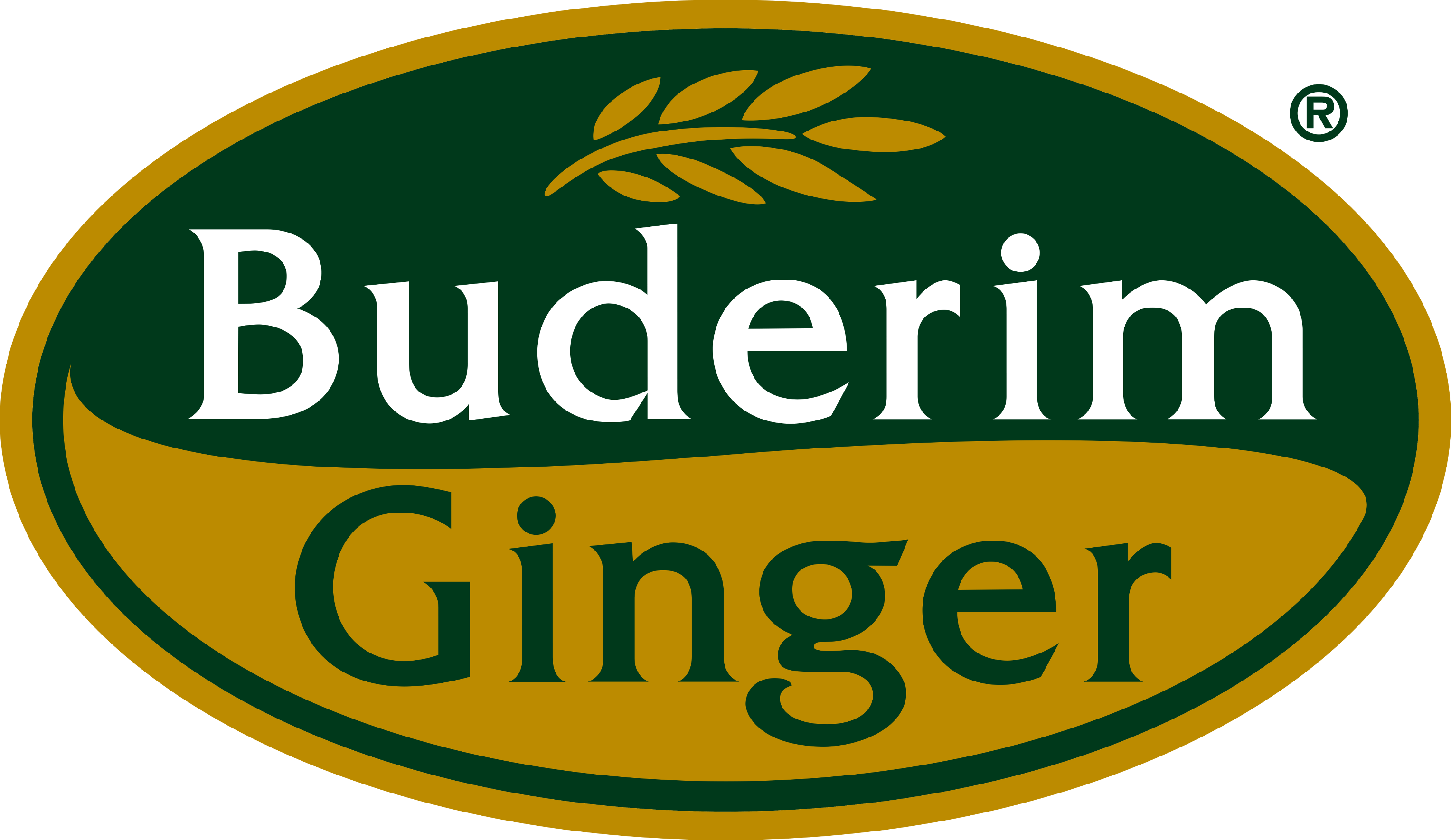Buderim Ginger Europe